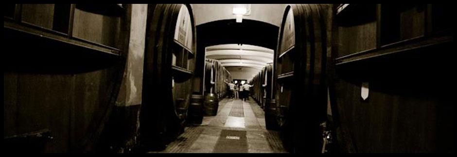 Fontanafredda Barolo barrels
